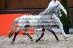 2021-03-13, Hengstenkeuring, Lunteren