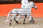 2. Christiano van Stal 't Hofke-12