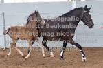 Eikenhorst Elisa en Burghoeve Paulien-4